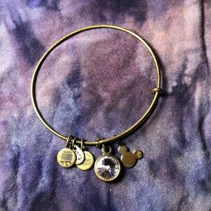 Alex and Ani Disney bracelet